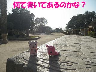 2012_03190670.JPG