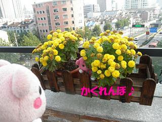 2012_09240662.JPG