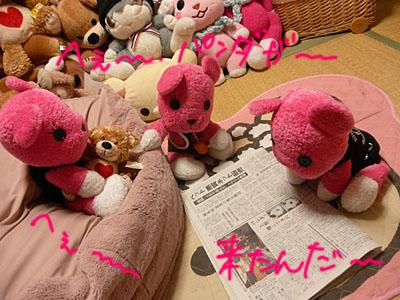 2011_02230052.JPG