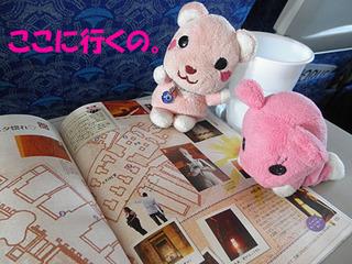 2012_03210975.JPG