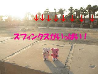 2012_03231257.JPG
