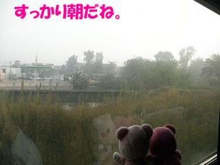 2012_03250796.JPG